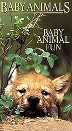 Baby Animals: Baby Animal Fun