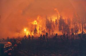 Wildfire Originally...