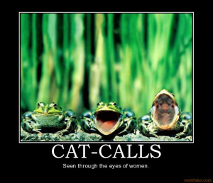 Cool Funny Cat Posters and Funny Cat Pictures