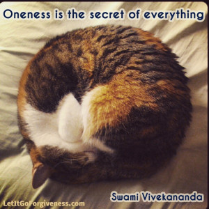 Oneness is the secret of everything