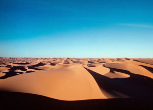 Desert Oasis Sand Picture