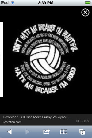 Volleyball Hitter Quotes
