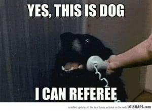 NFL referee fail = awesome new memes