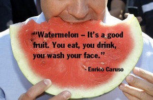watermelon quotes source http imgarcade com 1 funny watermelon quotes