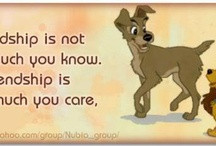 Disney Quotes About Family Disney quotes / by best family