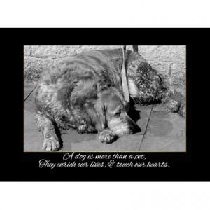death of dog sympathy card