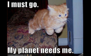 LOLCats - My Planet Needs Me