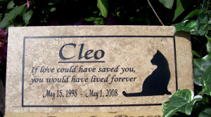 cat memorial plaque source http quoteko com italian funny quotes html