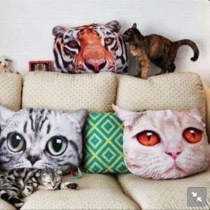 ... 610x610-jewels-pillow-cat-cats-cute-sweet-miau-rawr-funny-home.jpg