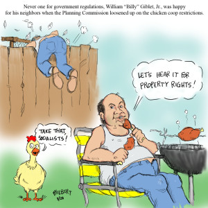 Chicken Pictures Funny Gallery