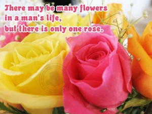 Romantic Quotes: There is only one rose…