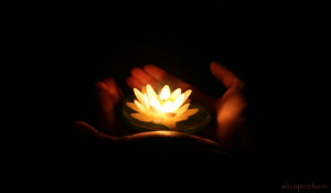 Thousands of candles can be lighted from a single candle, and the life ...