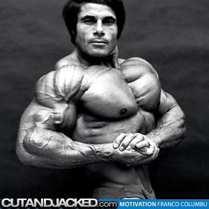Lou Ferrigno Quotes