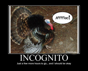 Funny Thanksgiving Pictures (16 Pics)