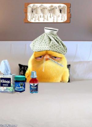 Funny Pooe Yellow Chicken with Bird Flu