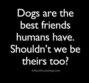 My Dog Is My Best Friend Quotes Dogs are the best friends