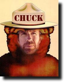 chuck norris in famous sayings chuck norris can have his cake