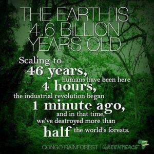 ... in that time, we've destroyed more than half the world's forests