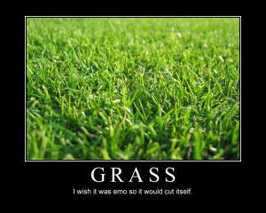 Emo_Grass_by_Voralyn.jpg