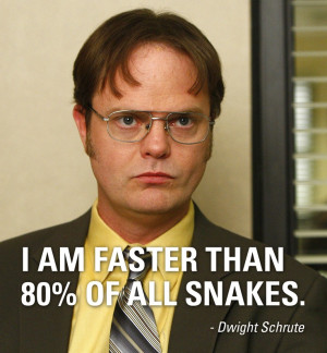 funny inspirational quotes for facebook dwight schrute quotes dwight ...