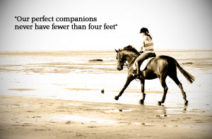 and beaches quotes famous quotes www helphorseshelpkid com hors quotes ...