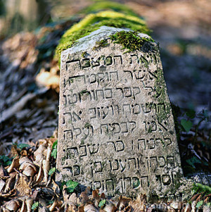with inscriptions in Hebrew. Among them are often famous quotes ...