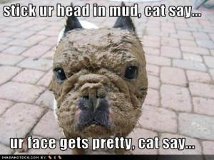 Funny Mudding Sayings Mudding quotes sayings