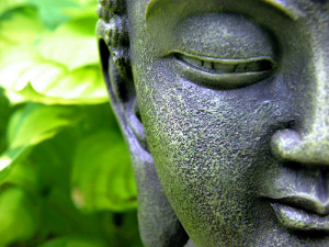 To study the Buddha Way is to study the self.