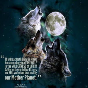 is now! you are no longer a lone wolf in the wilderness of life ...