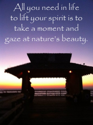 All You Need In Life To Lift Your Spirit Is To Take A Moment And Gaze ...