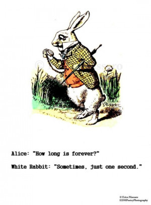 Decor, Alice Wonderland Quotes, Wives Holding, White Rabbits, Alice ...