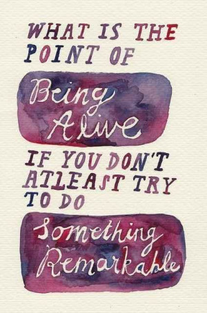 What is the point of being alive if you don't at least try to do ...