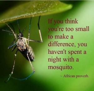 If you think you're too small to make a difference, you haven't spent ...