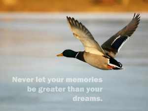 Duck Hunting Quotes Portal