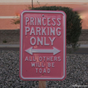 Displaying (18) Gallery Images For Princess Tumblr Photography...