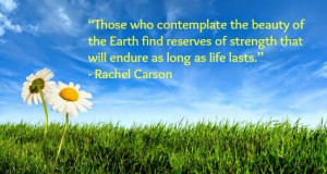 ... day quotes global earth day 2014 good earth day quotes happy earth day