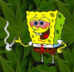 Year-Old Boy Pulls Out 9 Bags Of Marijuana At School | Marijuana ...