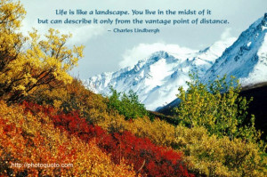 Life is like a landscape. You live in the midst of it but can describe ...