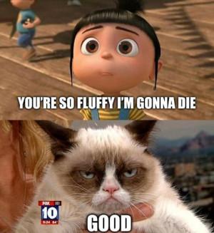 Grumpy-cat-MEME-and-LOL.jpg
