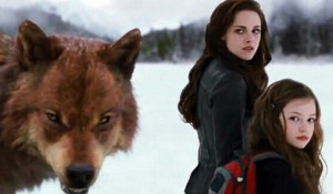 Twilight Series Best quote with: