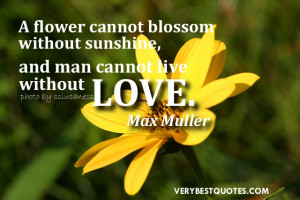 Love quotes - A flower cannot blossom without sunshine, and man cannot ...