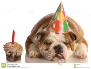 Happy Birthday Bulldog. Funny Dog Happy Birthday Sayings. View ...