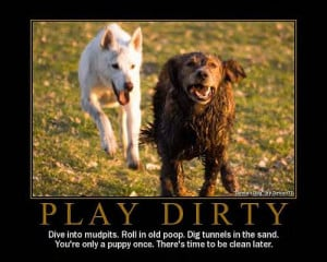 Dog Quotes (16)