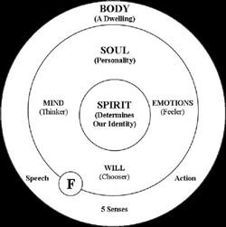 spirit soul body bible diagrams