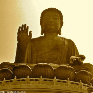 Buddha quotes' contain the essence of Buddhist teachings, which have ...