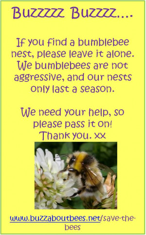 Bumble Bee Nest Box