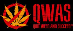 Stop Smoking WeedQuit Weed and Succeed