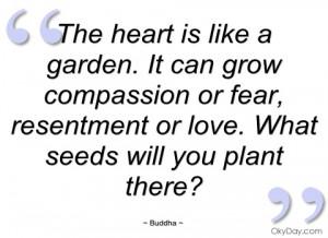 the heart is like a garden buddha