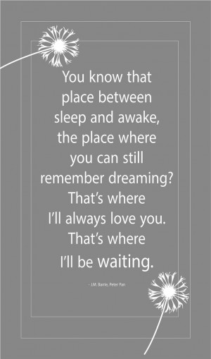 quotes peter pan wall quote tinkerbell quotes from peter pan peter pan ...