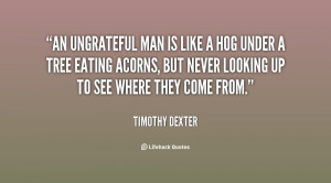 An ungrateful man is like a hog under a tree eating acorns, but ...